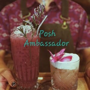 Other - Posh Ambassador 🦄